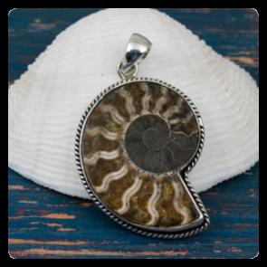 Сребърен медальон с амонит